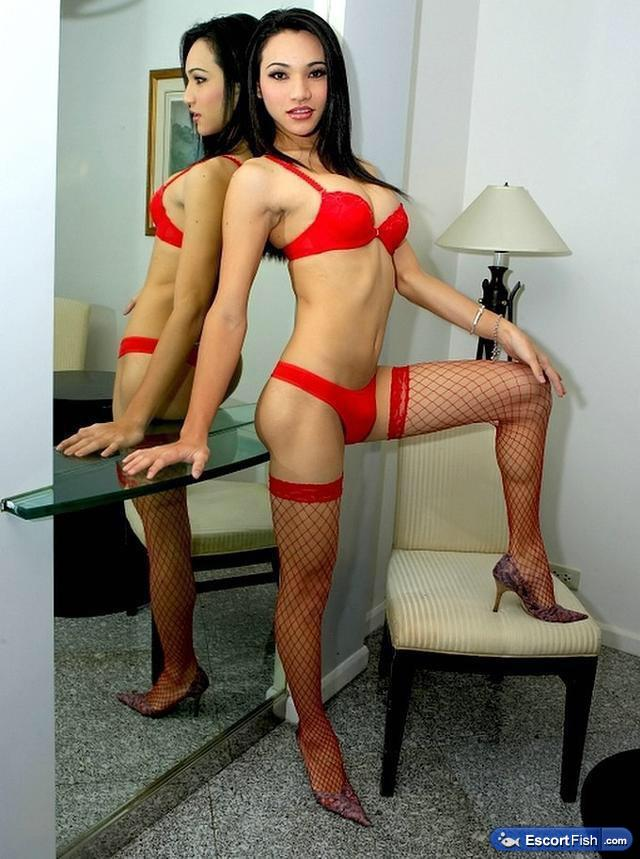Shemale escorts in virginia